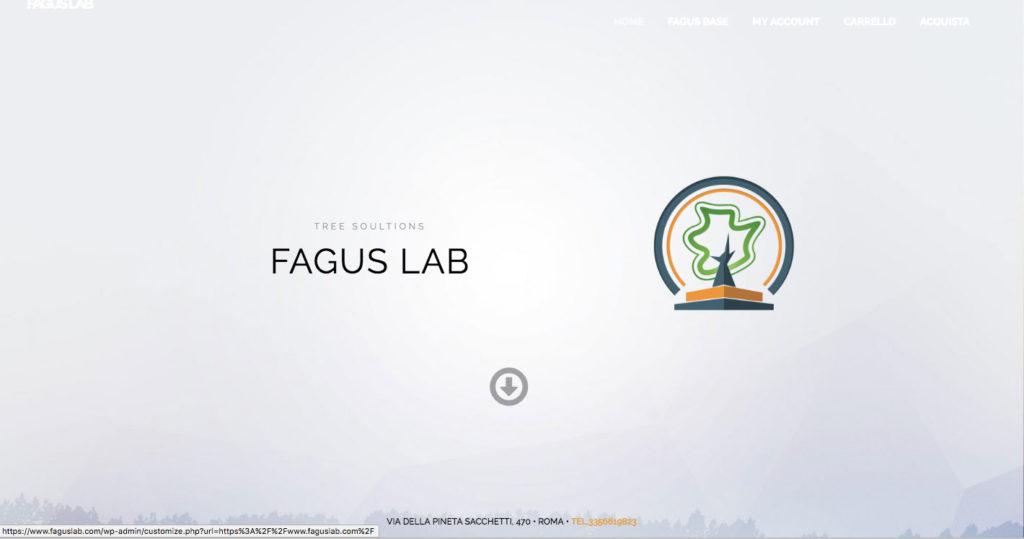 FAGUSLAB-sito